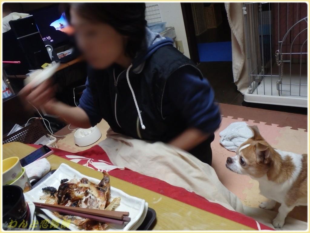 f:id:yasukazu01:20171208182705j:plain