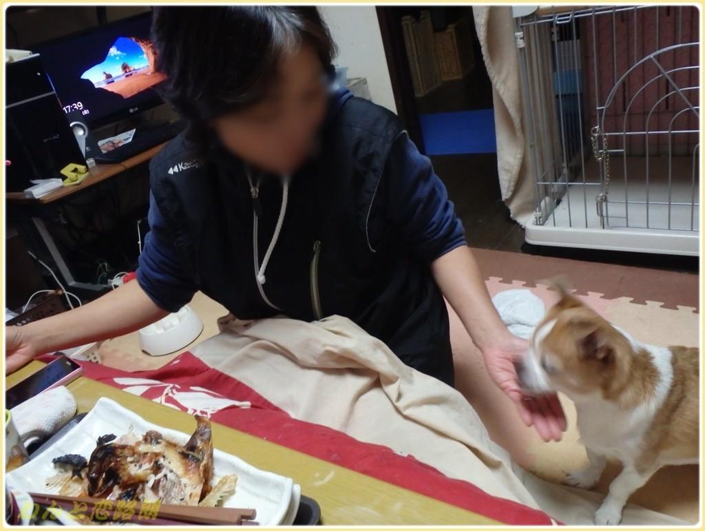 f:id:yasukazu01:20171208182840j:plain