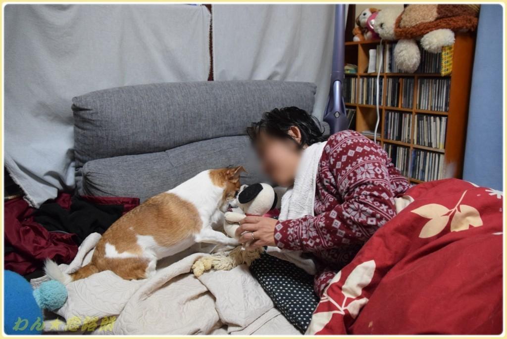 f:id:yasukazu01:20171208183048j:plain
