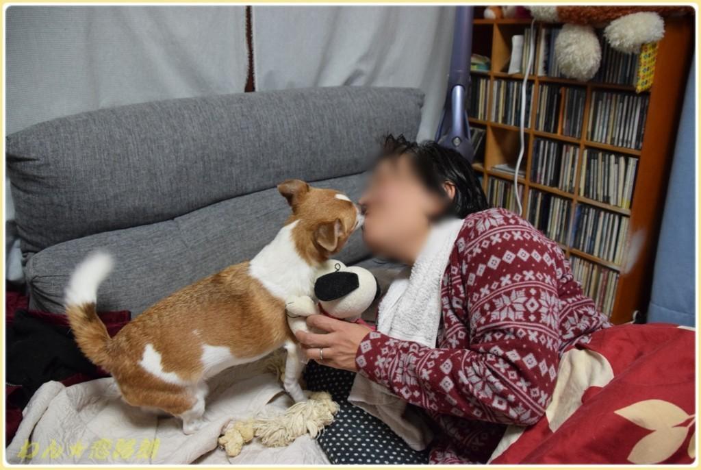 f:id:yasukazu01:20171208183214j:plain