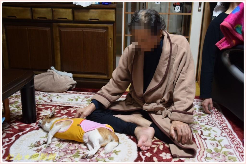 f:id:yasukazu01:20171210220012j:plain