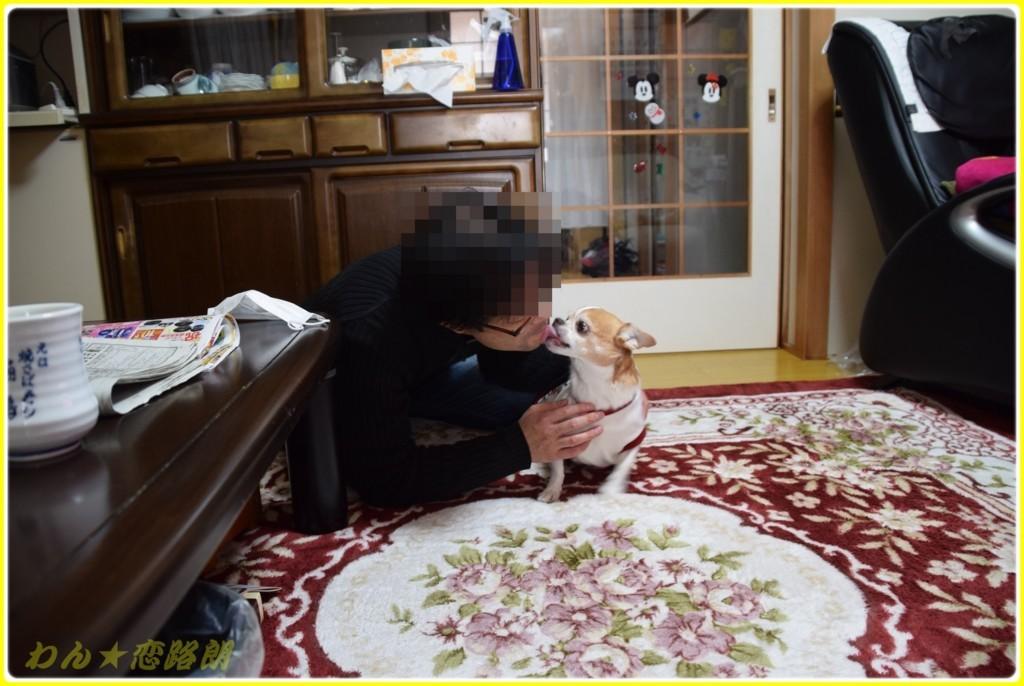 f:id:yasukazu01:20180117143222j:plain