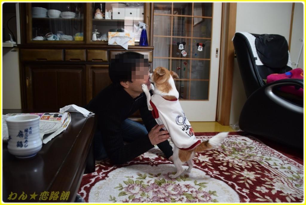 f:id:yasukazu01:20180117143310j:plain