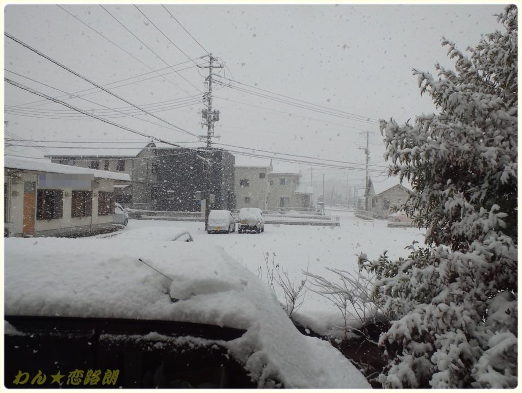 f:id:yasukazu01:20180213134625j:plain