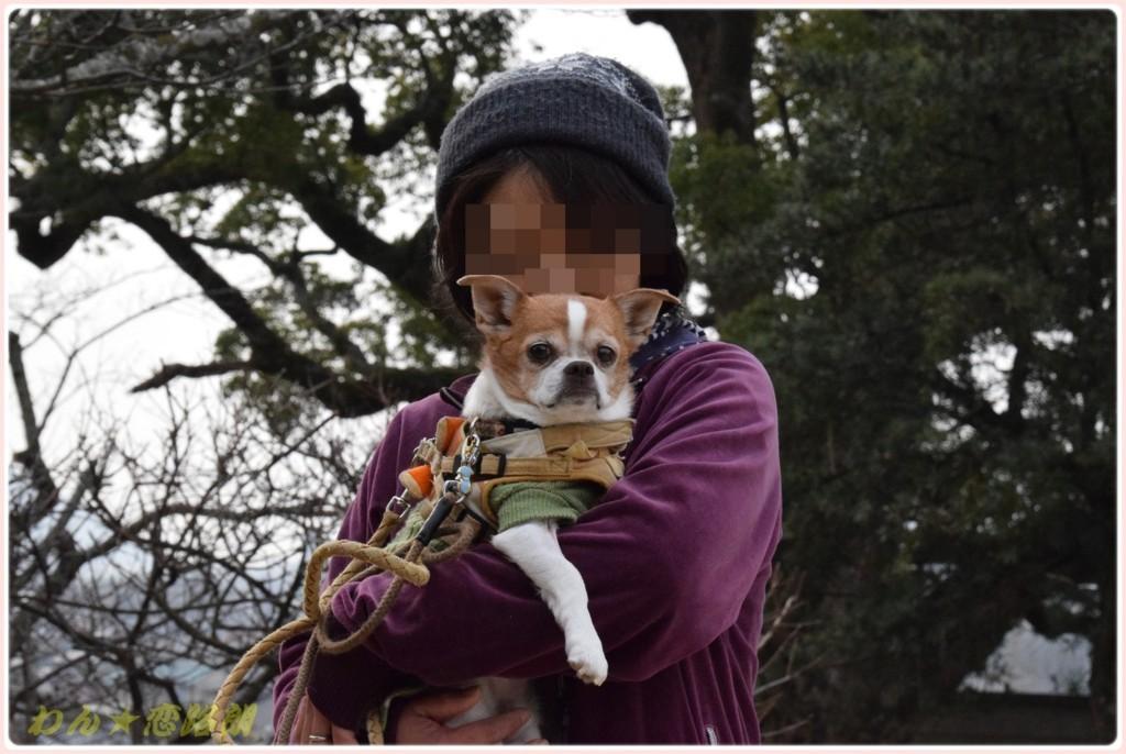 f:id:yasukazu01:20180227135325j:plain