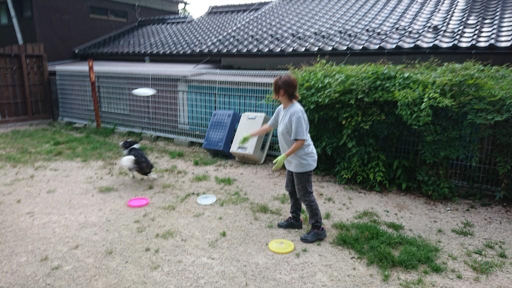 f:id:yasukazu01:20180713190218j:plain