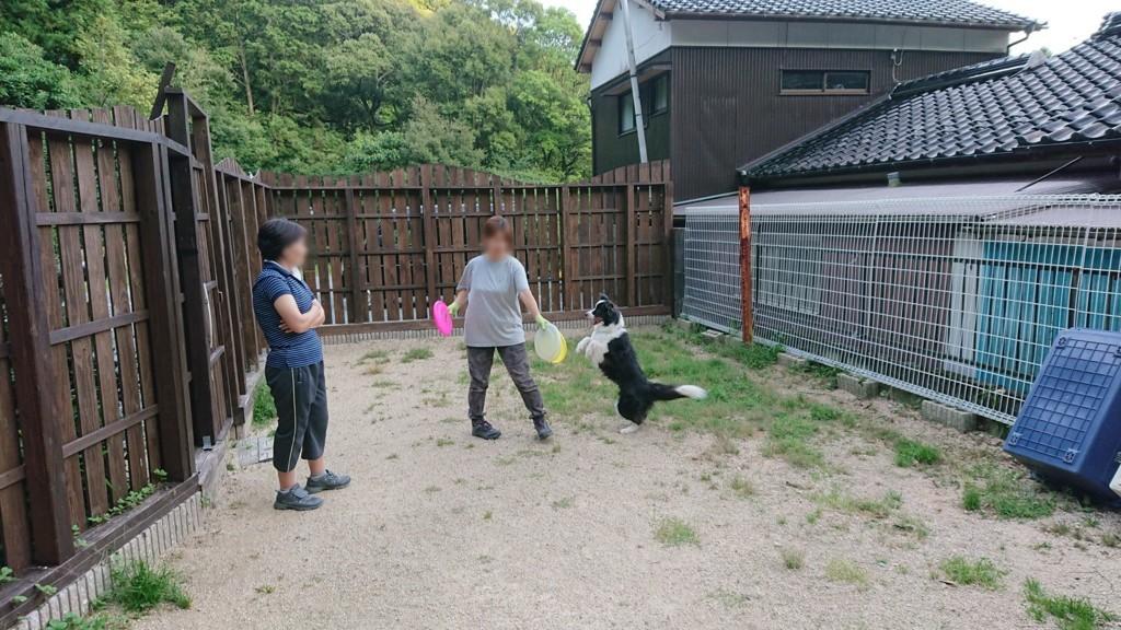 f:id:yasukazu01:20180724140951j:plain