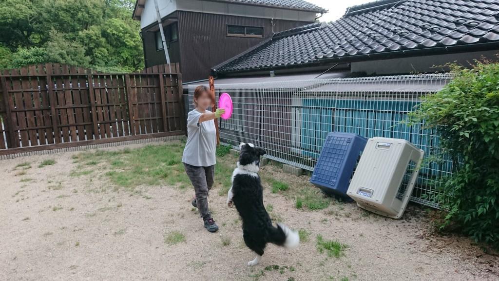 f:id:yasukazu01:20180724141446j:plain