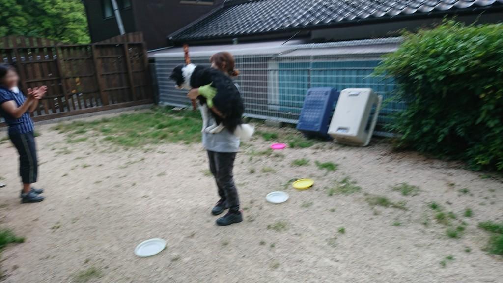 f:id:yasukazu01:20180724141852j:plain