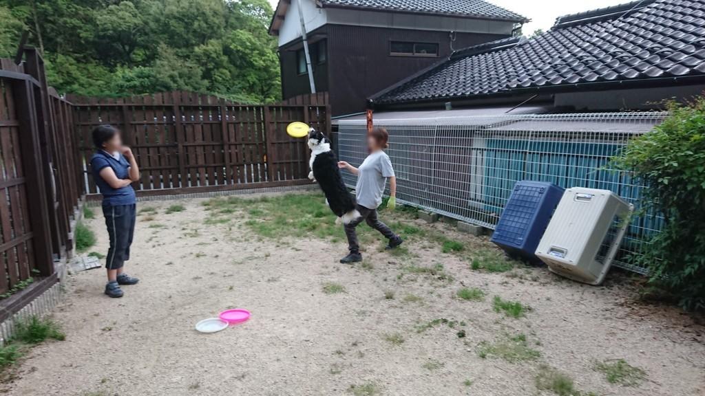 f:id:yasukazu01:20180724142417j:plain