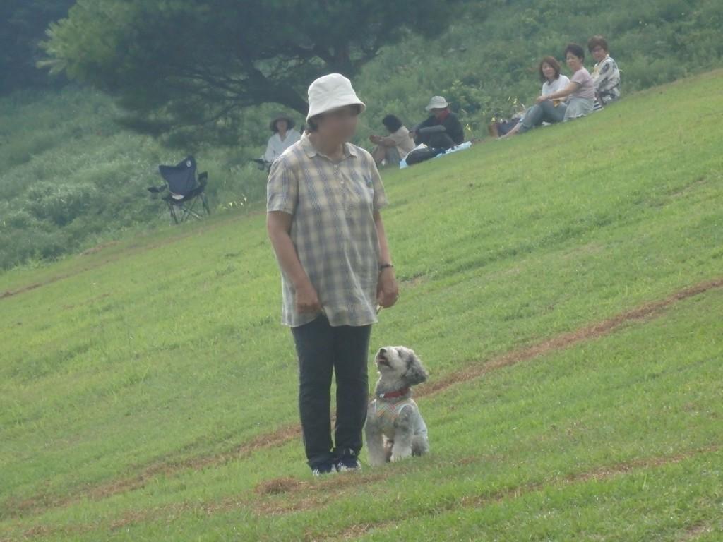 f:id:yasukazu01:20180726141246j:plain