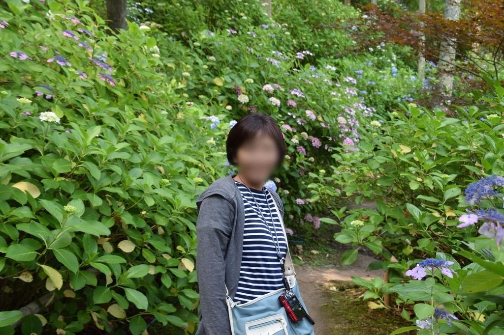 f:id:yasukazu01:20180829151646j:plain