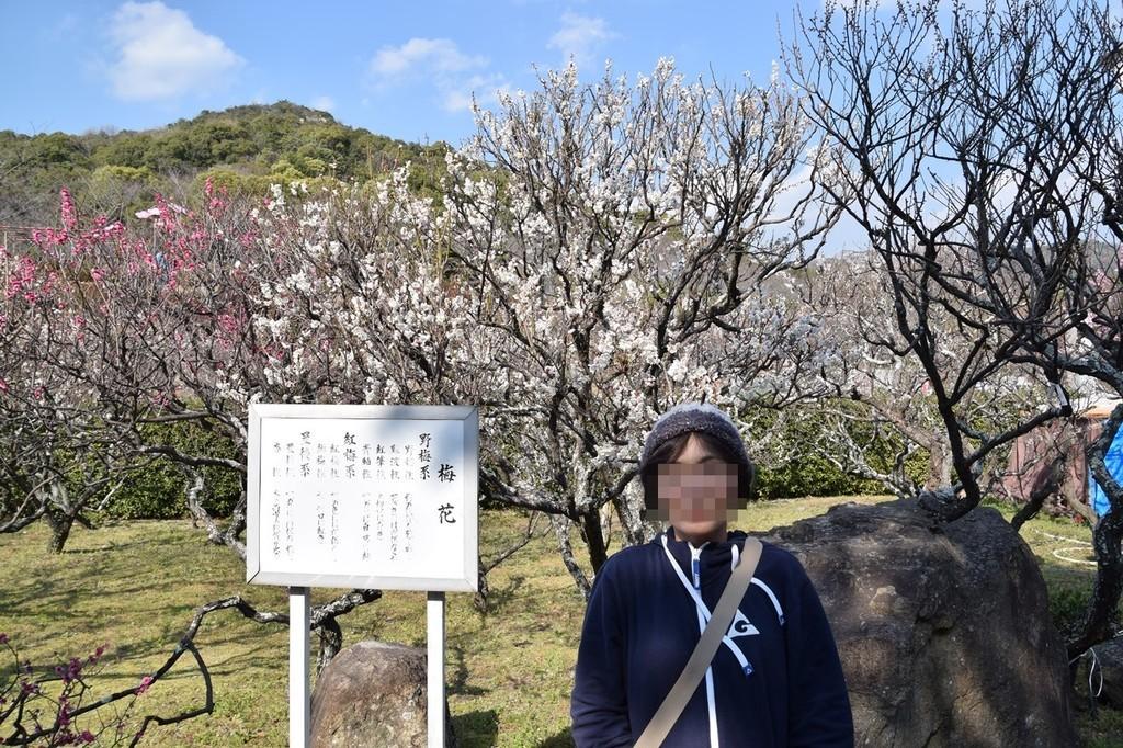 f:id:yasukazu01:20190219155155j:plain