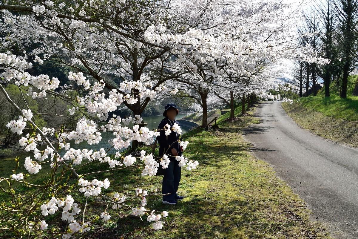 f:id:yasukazu01:20190416150047j:plain