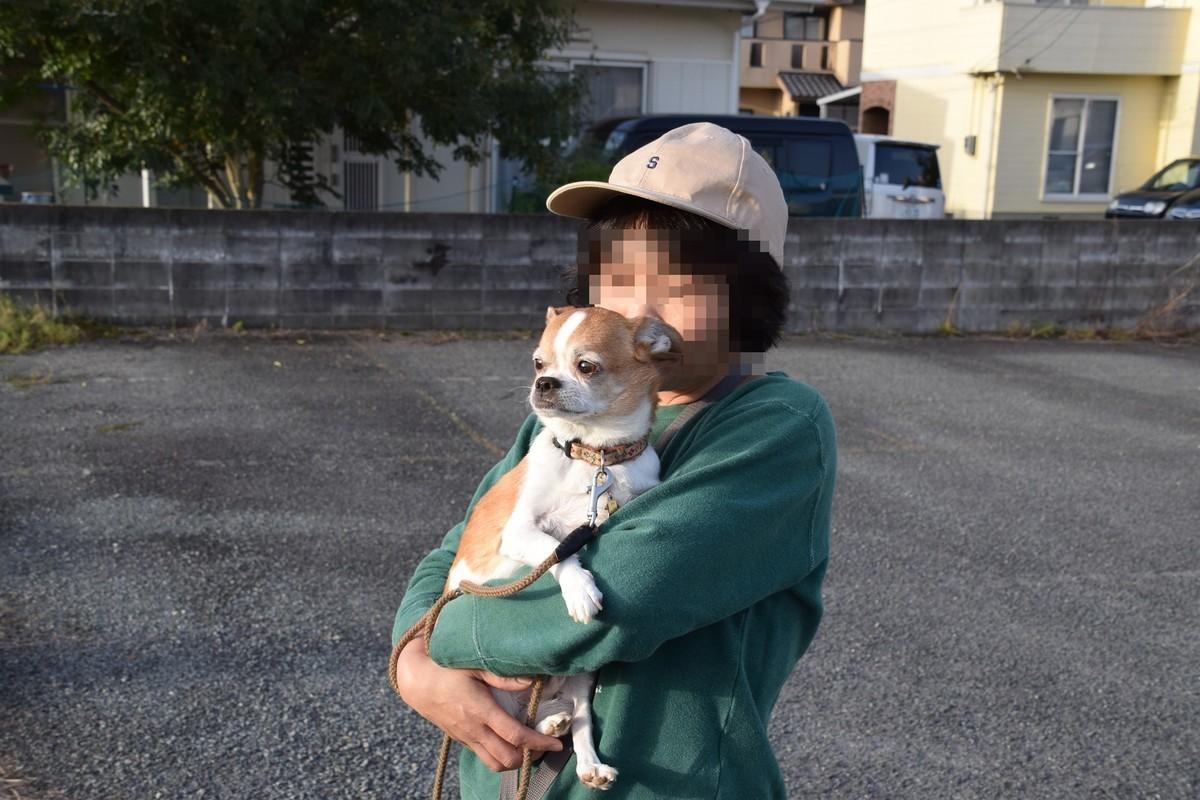 f:id:yasukazu01:20190418144924j:plain