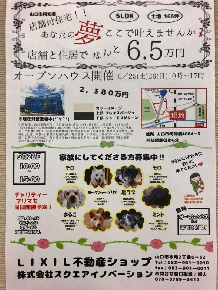 f:id:yasukazu01:20190527173915j:plain