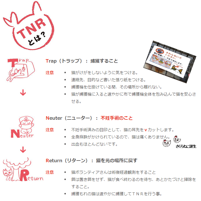 f:id:yasukazu01:20190529192953p:plain