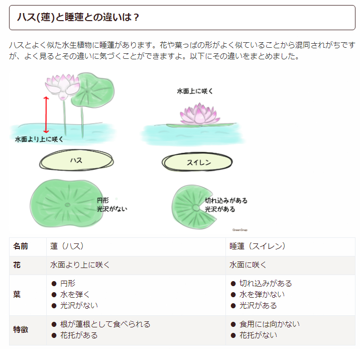 f:id:yasukazu01:20190628210912p:plain