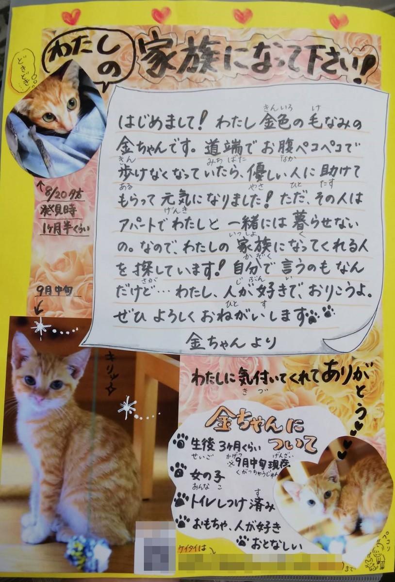 f:id:yasukazu01:20190925204014j:plain