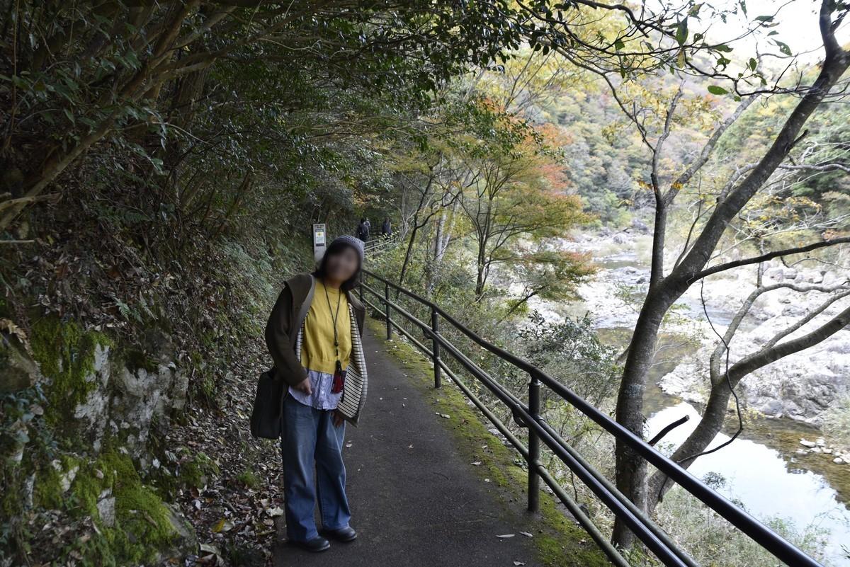 f:id:yasukazu01:20191120191834j:plain