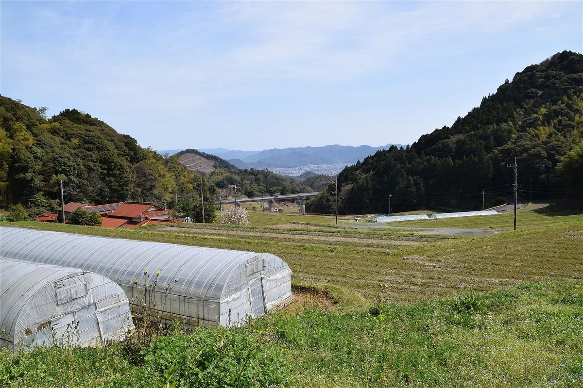 f:id:yasukazu01:20200329135906j:plain