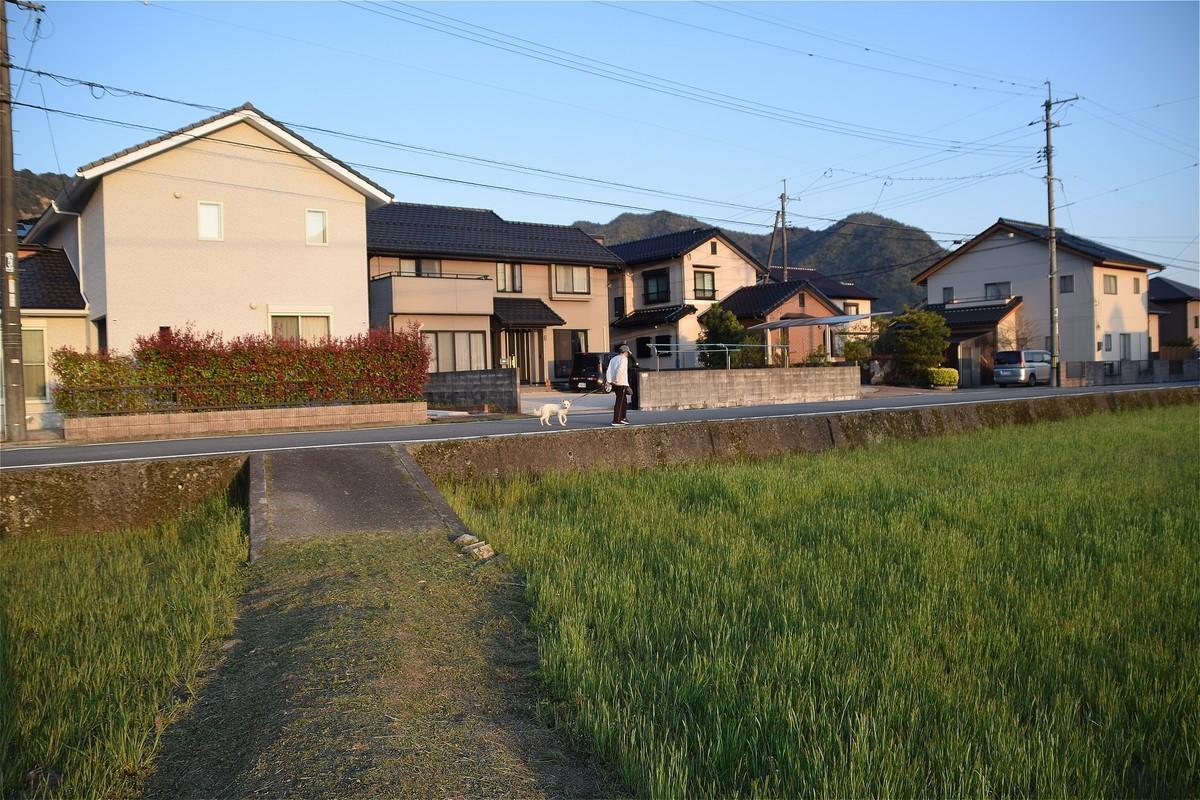 f:id:yasukazu01:20200407182135j:plain