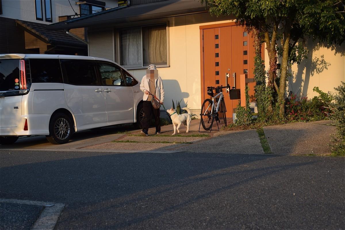 f:id:yasukazu01:20200409200118j:plain