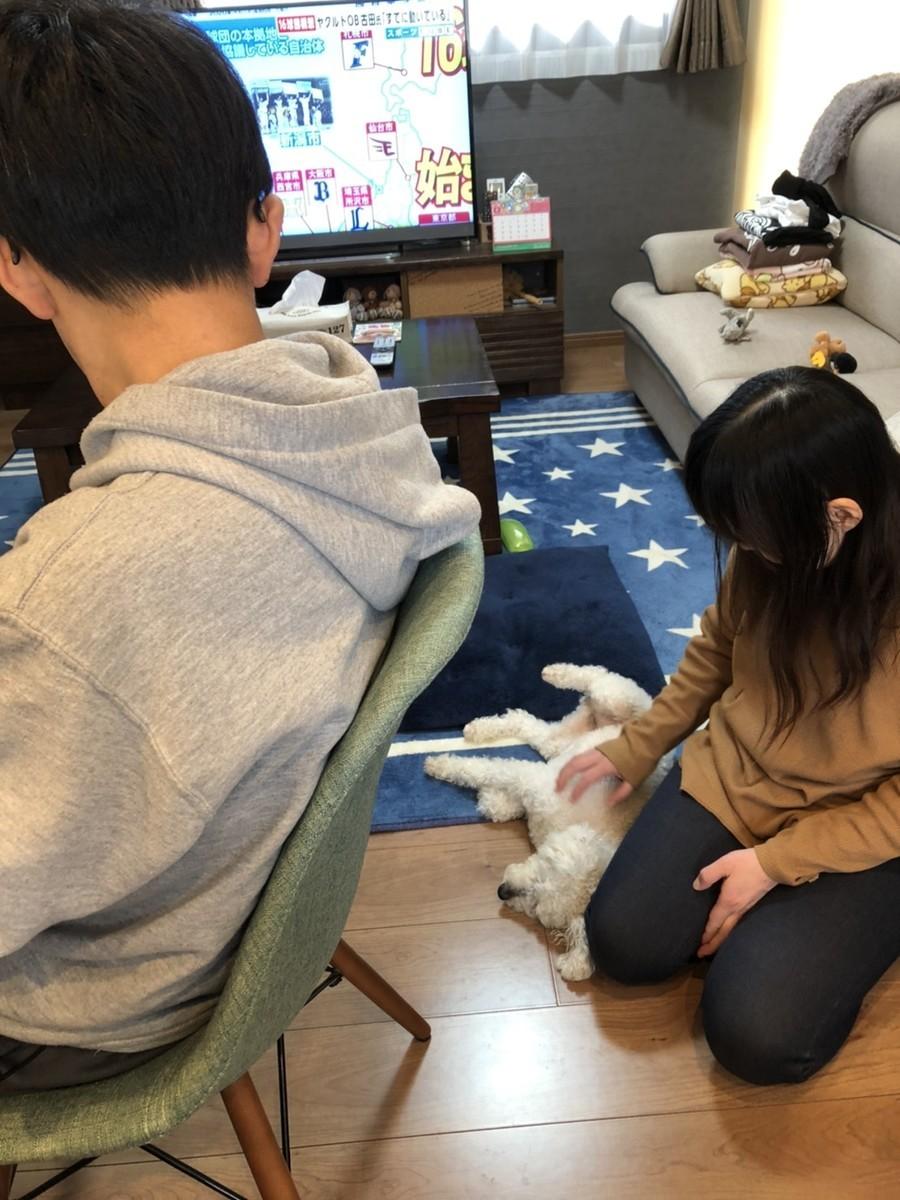 f:id:yasukazu01:20200411193513j:plain