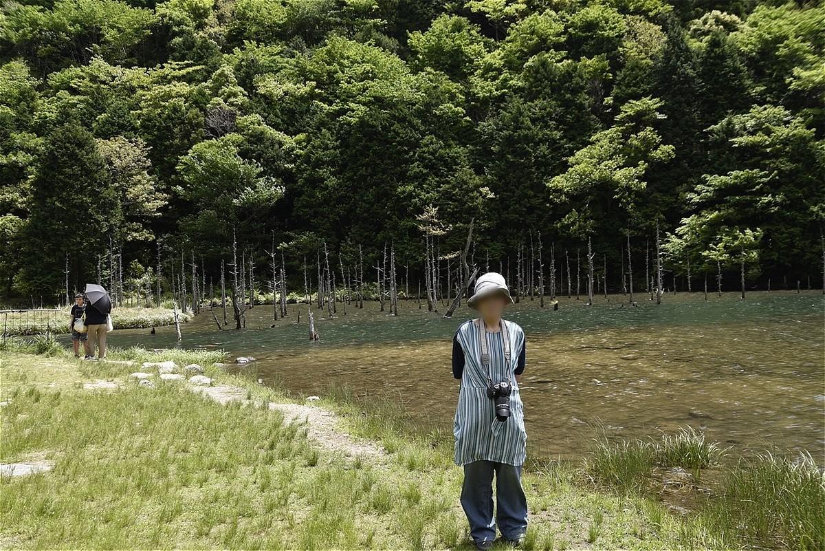 f:id:yasukazu01:20200526185648j:plain