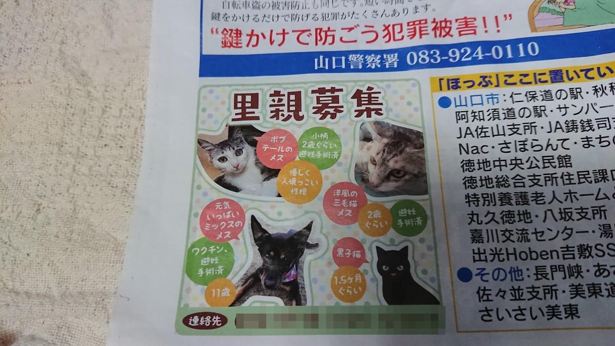 f:id:yasukazu01:20200613191046j:plain