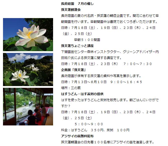 f:id:yasukazu01:20200723175808p:plain