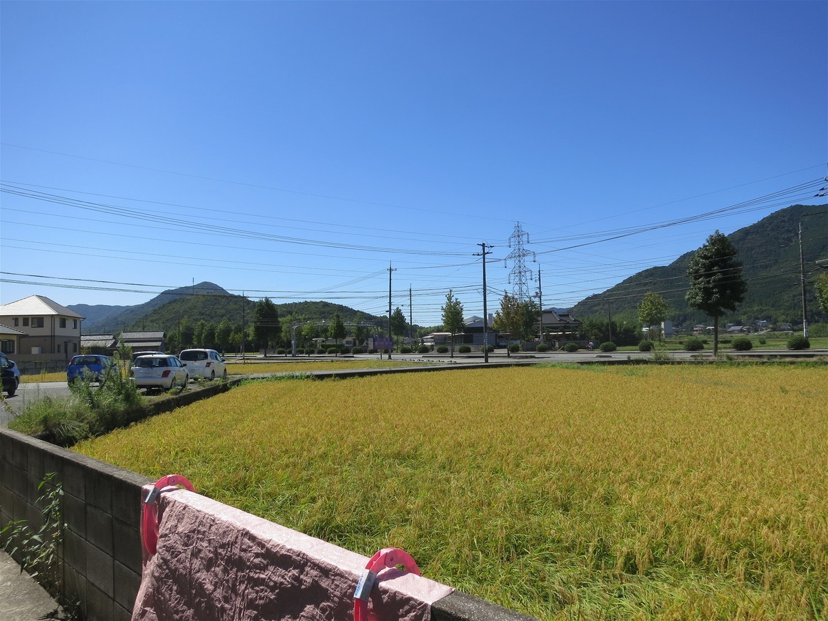 f:id:yasukazu01:20200916171234j:plain