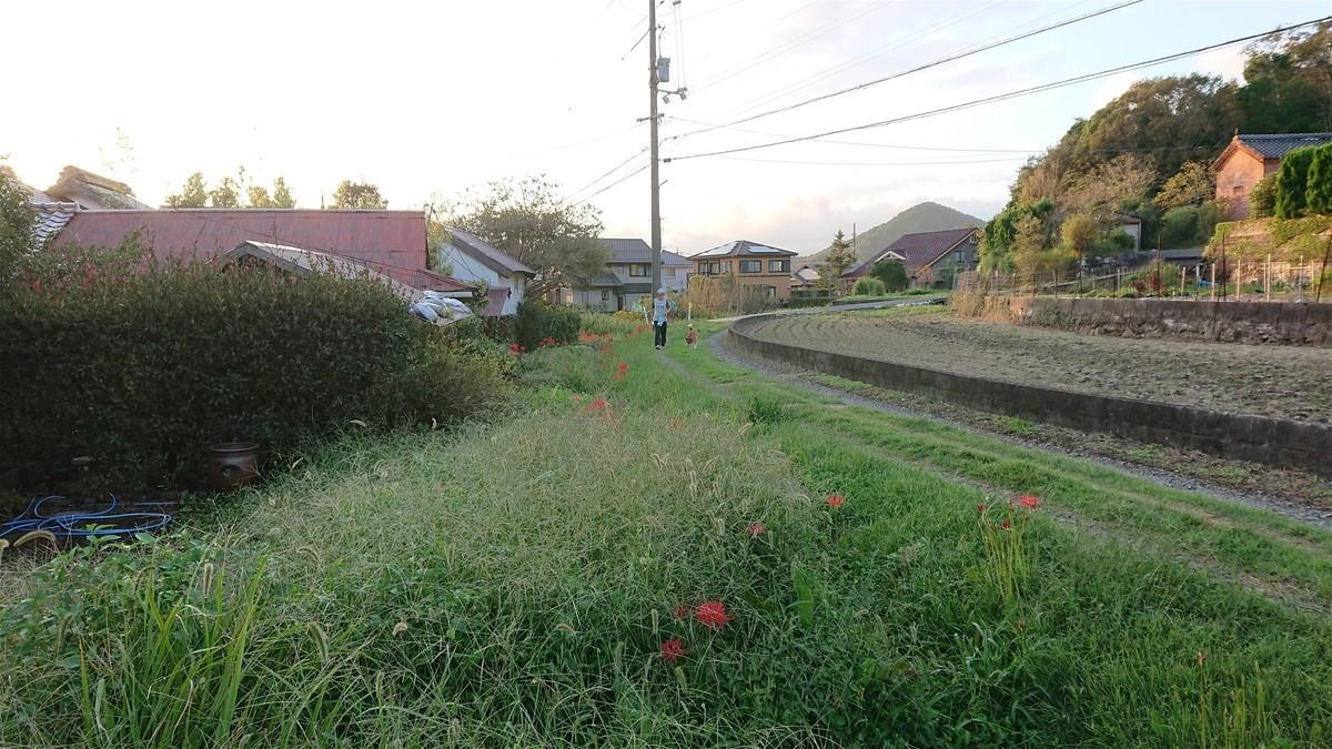 f:id:yasukazu01:20200927183213j:plain