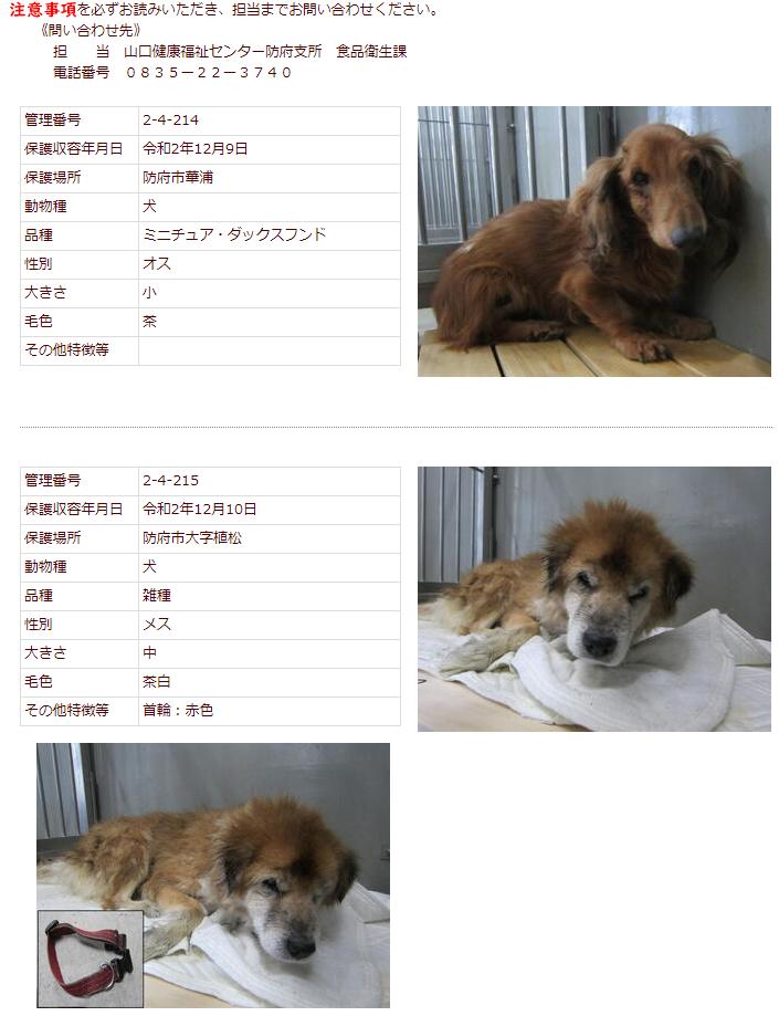 f:id:yasukazu01:20201211155348p:plain