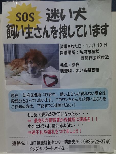 f:id:yasukazu01:20201213183648p:plain
