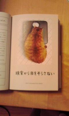 f:id:yasuko-imageup:20140904174955j:image:w200:right