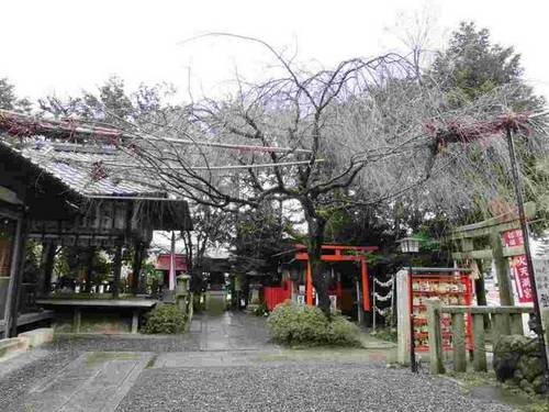 f:id:yasukochan:20150128230219j:image:w360