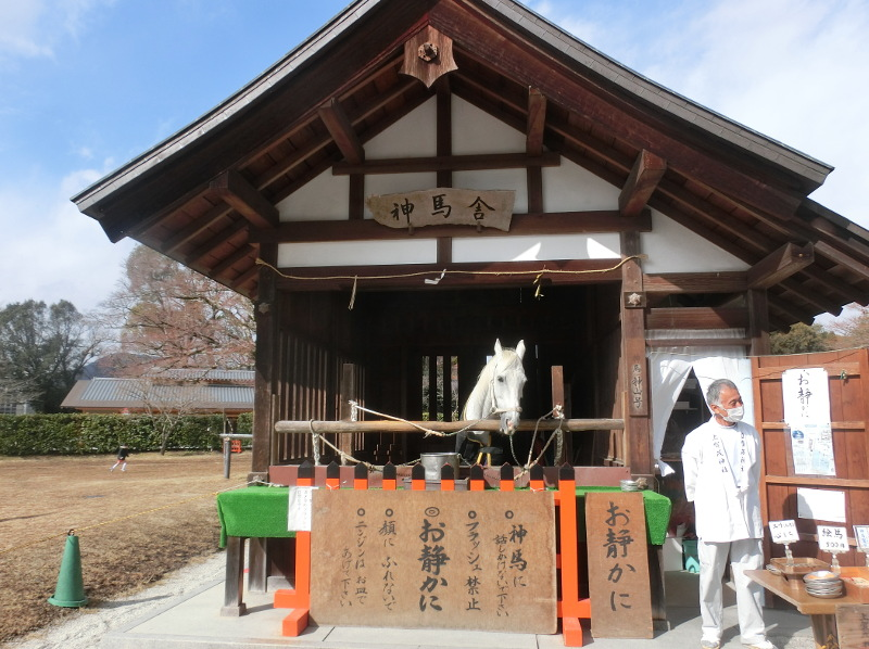 f:id:yasukochan:20180211105305j:image:w360