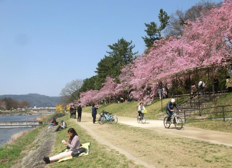 f:id:yasukochan:20180331124121j:image:w360