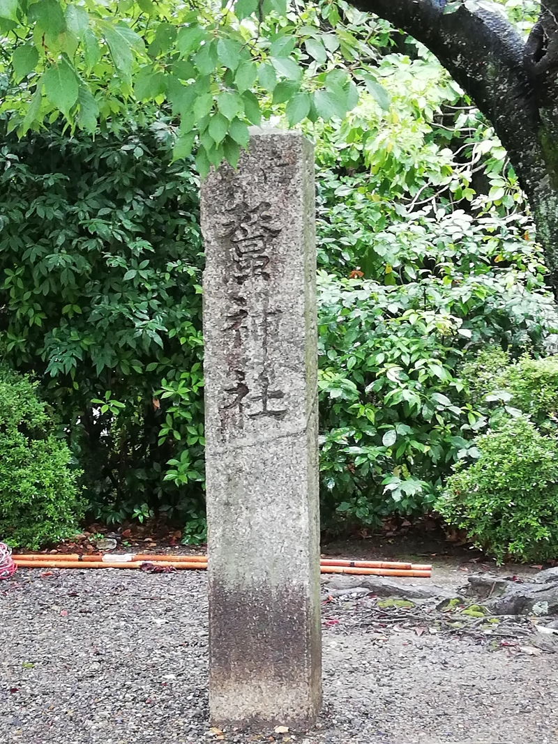 f:id:yasukochan:20190727153125j:plain