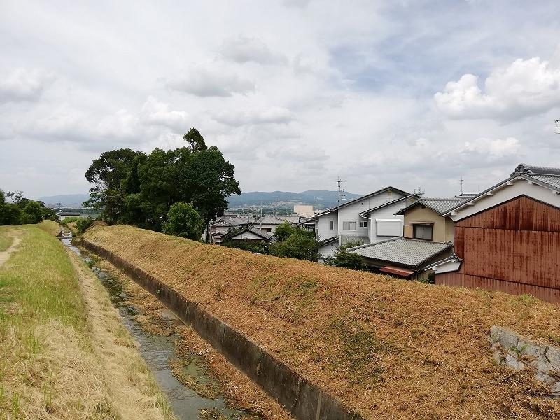 f:id:yasukochan:20200814153348j:plain