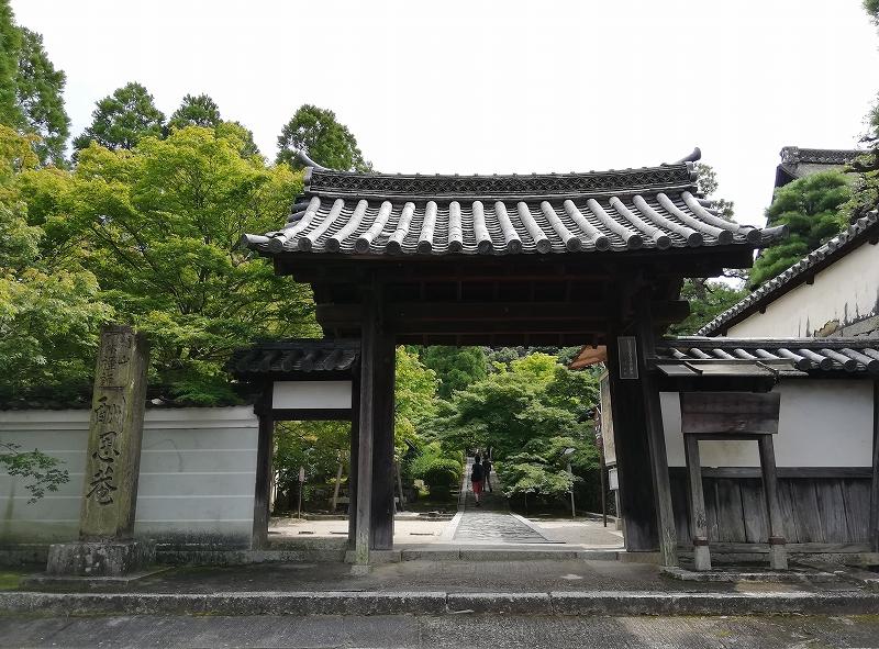 f:id:yasukochan:20200814153953j:plain