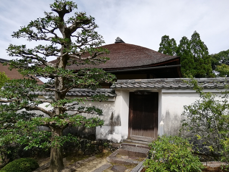 f:id:yasukochan:20200814162501j:plain