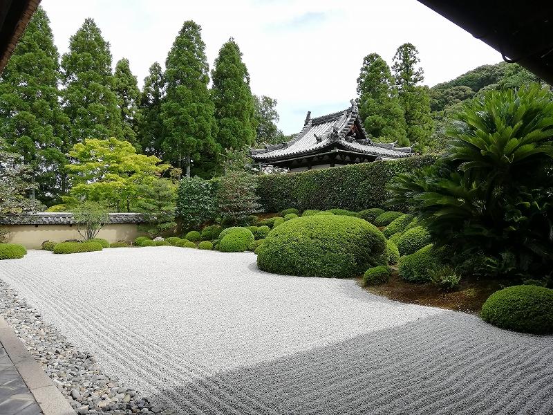 f:id:yasukochan:20200814171707j:plain