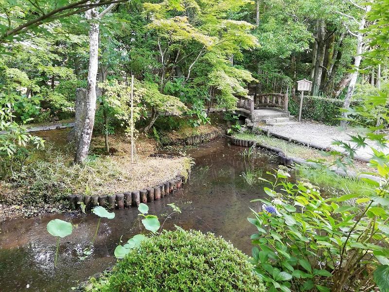 f:id:yasukochan:20200814194907j:plain