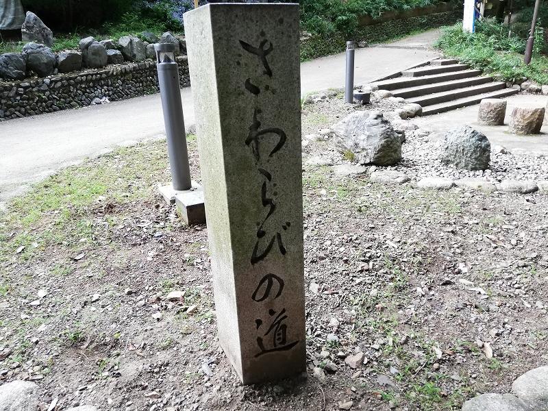 f:id:yasukochan:20200921155711j:plain