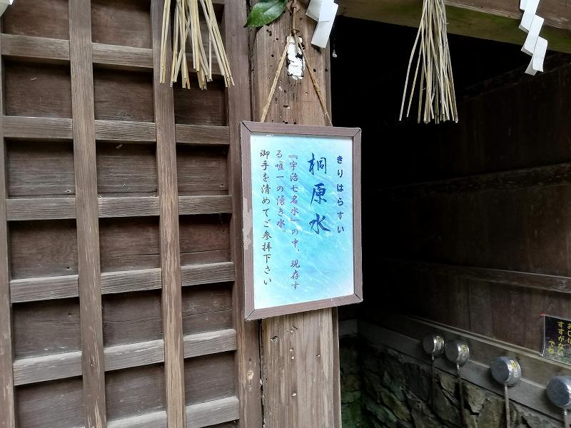 f:id:yasukochan:20200921180252j:plain