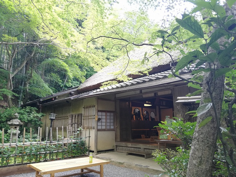 f:id:yasukochan:20210725145834j:plain