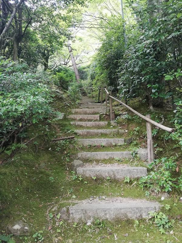 f:id:yasukochan:20210725155101j:plain