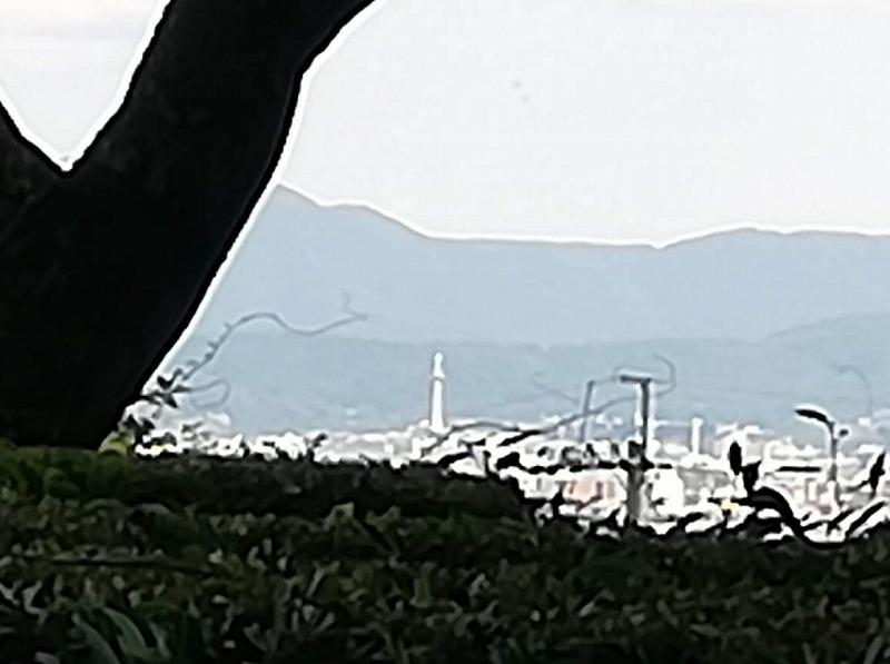f:id:yasukochan:20210725161053j:plain